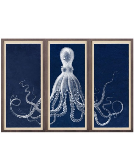 NATURAL CURISITIES LORD BODNER TRIPTYCH IN BLUE WITH FRAME