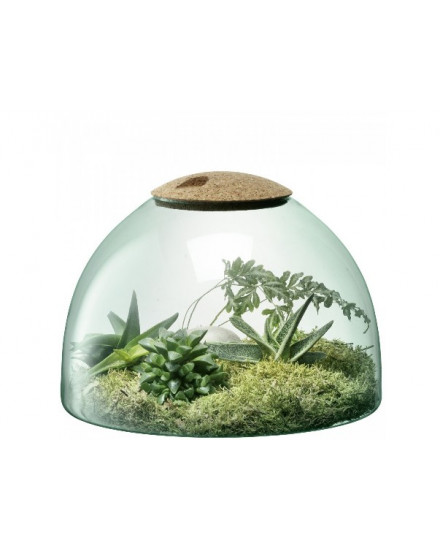 CANOPY CLOSED GARDEN H22CM CLEAR/CORK